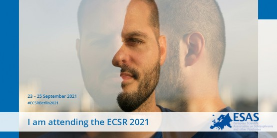 I'm attending the ECSR 2021